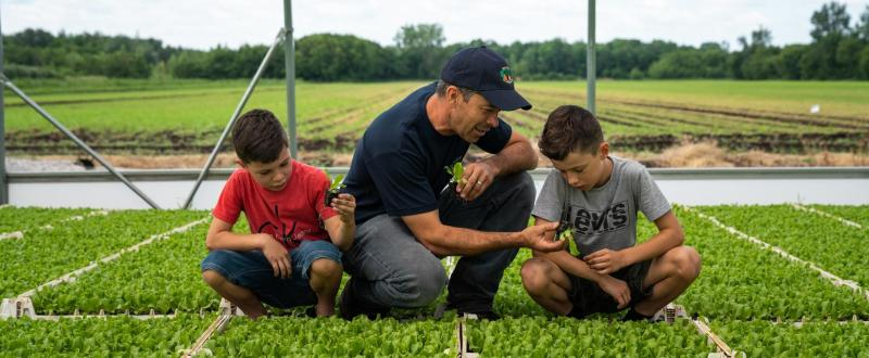 How to make their farms prosper and feel more secure about their families' futures.